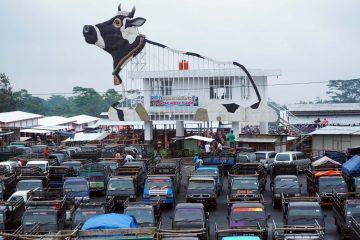 Pekan ini Pasar Hewan Jelok Boyolali Mulai Beroperasi
